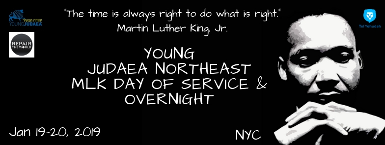 Young Judaea MLK Overnight and Service Day – Northeast YJ