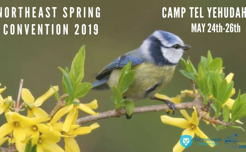 Northeast Spring Convention 2019